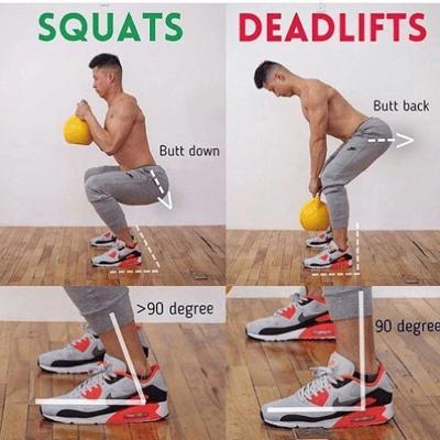 Squats vs Deadlifts